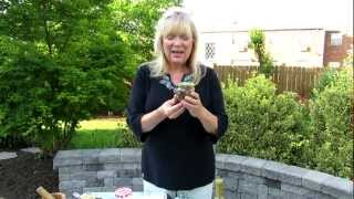 Make Herb Vinegar For Jam Jar Dressings