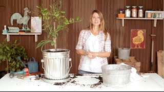 How To Make A Trash Can Planter | Container Gardening With Emily Murphy