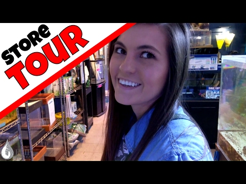 Fish Store Tour with Amanda - Saltwater Aquariums and Rare Pets