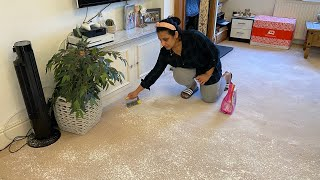 Every House We Like, It Always Get Sold | Carpet Cleaning|Tapiocca Dosa Recipe
