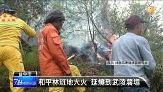 【2016.04.10】和平林班地大火 延燒到武陵農場 -udn tv