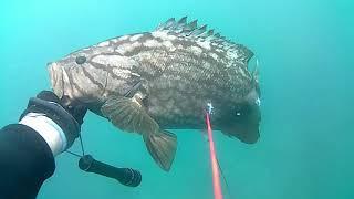 Места для подводной охоты