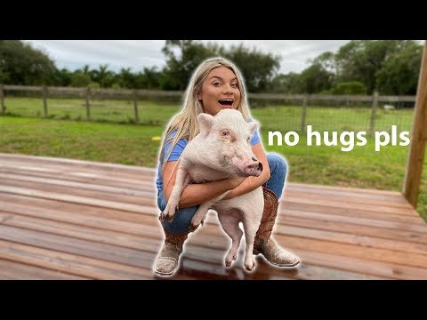 HUGGING ALL MY PETS FOR TOO LONG!