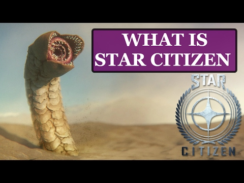 Star Citizen: What is it about?