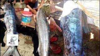 Ngư dân bắt được con cá có hình xăm, zoom kĩ mới hoảng hốt: 'Lẽ nào đến từ ngoài hành tinh?'