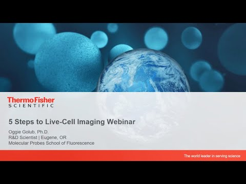 Best practices: 5 steps to live-cell imaging