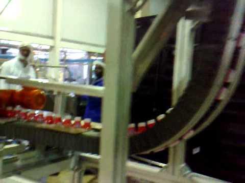 Wedge conveyor (Elevator or lowerator) 2