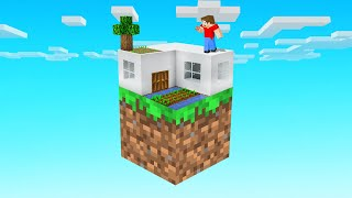 We BUILT A HOUSE On ONE BLOCK! (Minecraft)