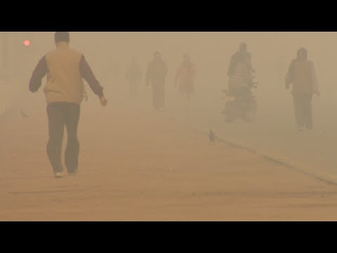See the Delhi pollution 'you can taste'