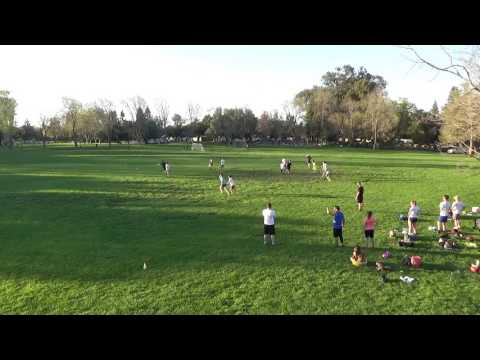 Ultimate Disc Highlights in Mountain View @Rengstorf (Seniors only) | Mar 14, 2017