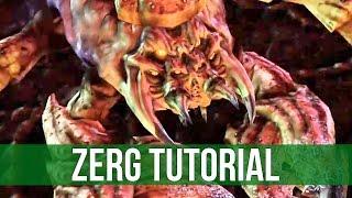 StarCraft 2: Zerg Tutorial - Drones before Army!