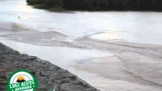 Baixar Rio Araguaia subindo em Luiz Alves, GO -  Janeiro de 2016