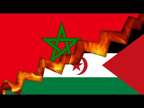 The Western Sahara Conflict, Explained