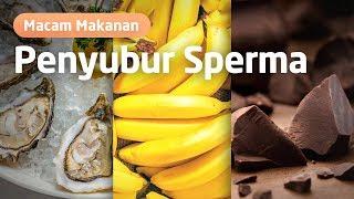 4 jenis vitamin kesuburan yang akan buat kamu cepat hamil, vitamin ini untuk pria dan wanita Informa.