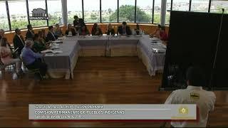 Sesión Ordinaria de la Comisión de Pueblos Indígenas - 25-03-2019