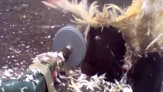 Насадка в дрель для ощипа птицы