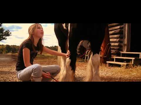 La Nouvelle vie de Whitney - Bande-annonce officielle HD VF en streaming