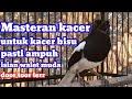 Masteran Kacer Terbaik Untuk Kacer Yg Gak Mau Bunyi Pasti Ampuh  Mp3 - Mp4 Download