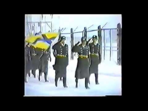 Город Мурманск: климат, экология, районы, экономика
