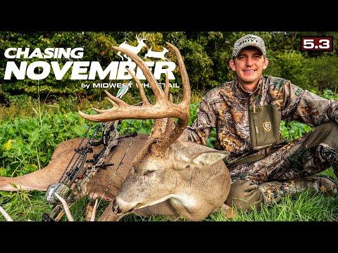 Early October Trophy Whitetail | Public-Land Deer Hunting Heartbreak | Chasing November