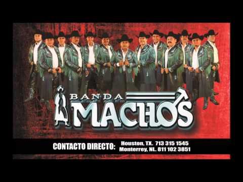 Banda Machos Contrataciones