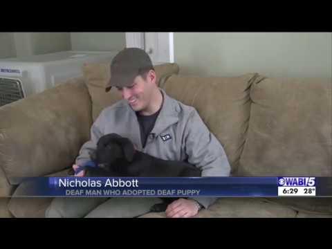 Silent Puppy Love: Emerson & Nick