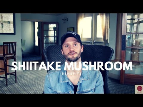 Shiitake Mushrooms: Improved Metabolism, Immunity & Energy