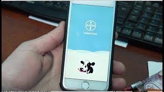 Оределение упитанности коров с помощью смартфона