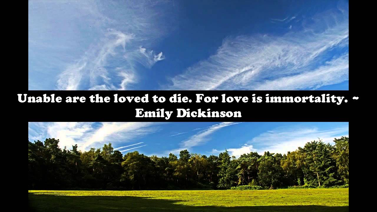 Inspirational Quotes About Death Of Loved One