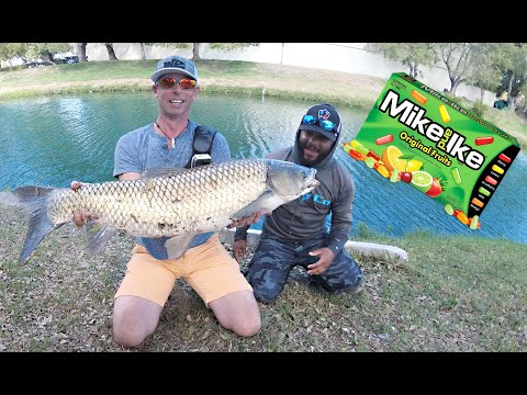 Catching Fish On CANDY With Monster Mike!!!