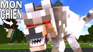 J'ADOPTE UN CHIEN ?!   Hello Neighbor Minecraft