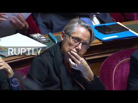 LIVE: French Senate holds debate on fuel-tax amidst 'Yellow Vests' furore