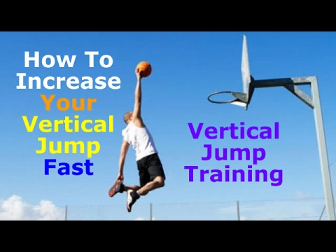 vertical jump training program pdf