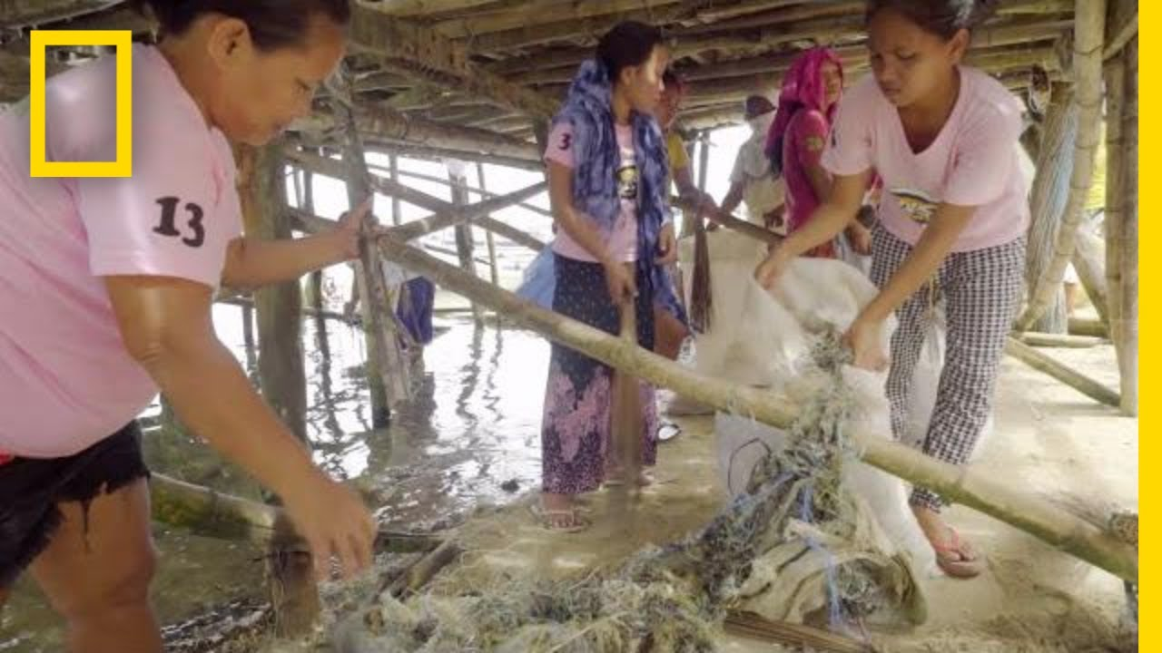 This Community in the Philippines Converts Plastic Fishing Nets to Carpet | National Geographic