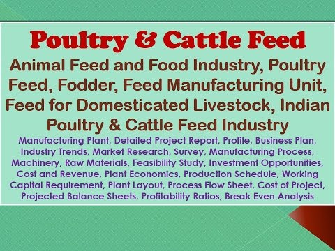 Poultry and Cattle Feed, Animal Feed and Food Industry, Fodder, Feed Manufacturing Unit