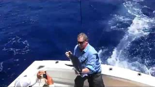 Florida Keys Sailfish and Blackfin Tuna Fishing with Capt. Dan Matthews