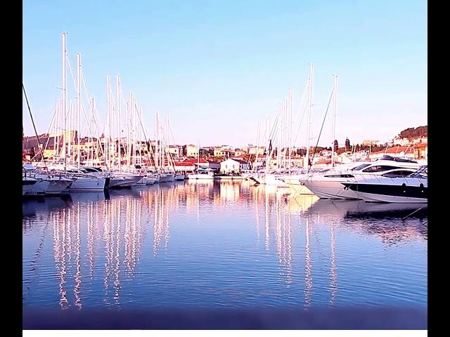 shipinn marina