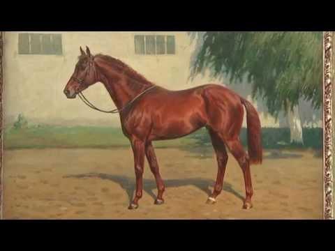 Лошадь и бизнес. Конная выставка