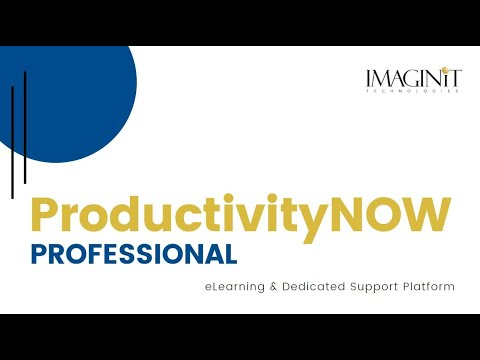 ProductivityNOW Professional