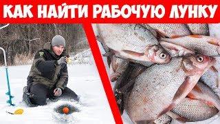 Как поймать МНОГО рыбы! РЫБАЛКА ЗИМОЙ на МОРМЫШКУ и ПОПЛАВОК