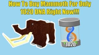 How to get Limited Mammoth RIGHT NOW! - Roblox Dinosaur Simulator
