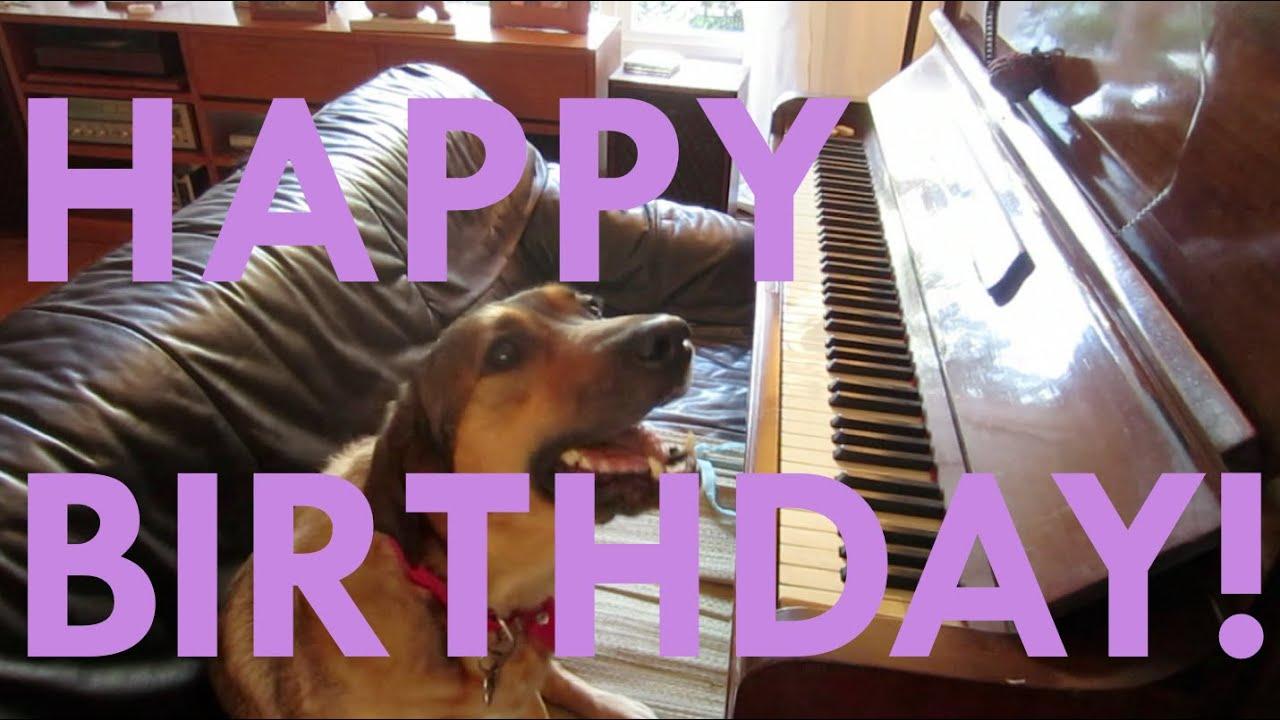Tina The Dog Sings Happy Birthday!