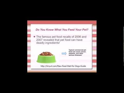 Raw Food Diet For Dogs | Best Dog Food For Allergies & Diseases