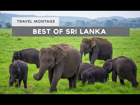 The Best of Sri Lanka (Travel Video Montage)