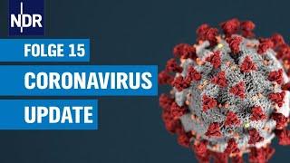 Coronavirus-Update 15 - Infizierte werden offenbar immun