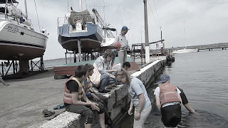 """Дельфинчика пытались накормить бычками (видео """"Корабелов.Инфо"""")"""