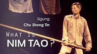 The Nature of 'Nim Tao' | Chu Shong Tin Wing Chun