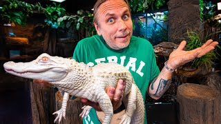 MORE ALBINO ALLIGATOR ISSUES TO TRY TO FIX!!! | BRIAN BARCZYK