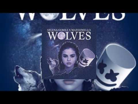 Download Youtube: Selena Gomez X Marshemllo - Wolves (Anvi Party Remix)