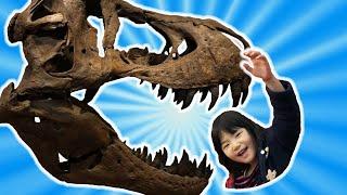 恐竜がいる科学館で遊んだよ!おでかけ!Giant Dinosaurs for Children